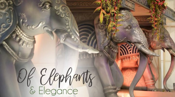 Of Elephants and Elegance